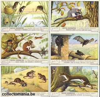 Chromo Trade Card 1467 Piccoli mammiferi
