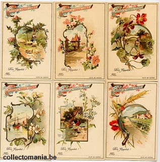 Chromo Trade Card T16 *Country and River Scenes with Flowers 1898
