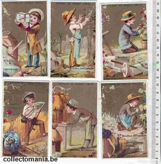 Chromo Trade Card cib_1_7_5 Gardener - agriculture